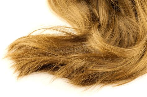 Flaxen Yellow Hair by Beautiful Flaxen Hair Royalty Free Stock Image Image