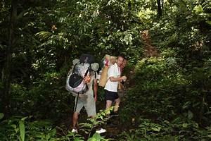 Activities at Taman Negara