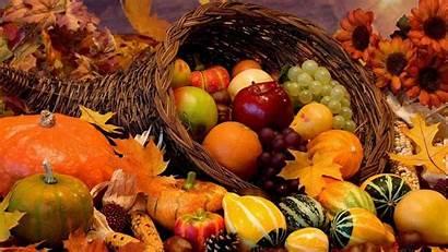 Harvest Fall Iphone Desktop Backgrounds
