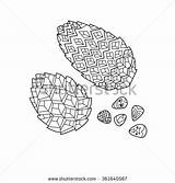 Coloring Peninsula Kamchatka Zentangle Designlooter Pinecones Baikal Stress Therapy Anti Adult sketch template