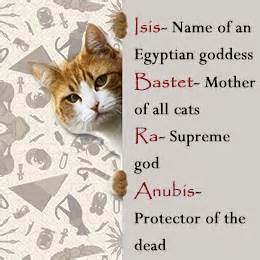ancient cat names cat names buzzle