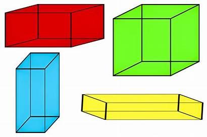 Geometry Geometri Geometria Lat Brainly Domain Tarea