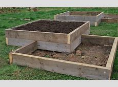 New raised beds – the story so far The Garden Deli