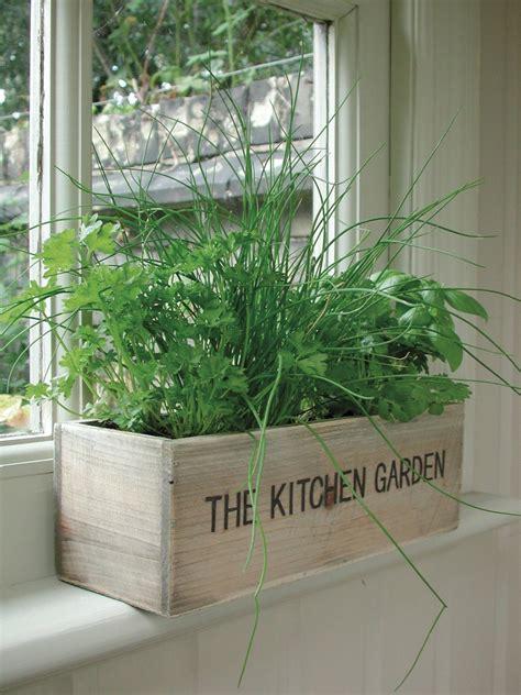 Indoor Window Planter by Indoor Wooden Window Herb Garden Kitchen Trough Box
