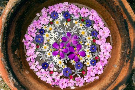 Floating Flower Mandala · Happy Sleepy
