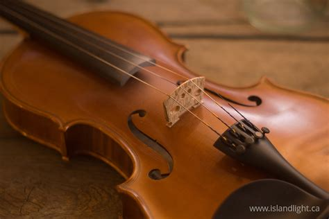 musical instrument  collection  musical instrument
