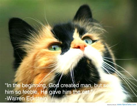 animals  god quotes quotesgram