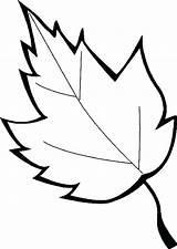 Leaves Leaf Coloring Pages Oak Printable Holly Marijuana Maple Leafs Printables Sugar Drawing Getcolorings Clipartmag Sheet Getdrawings Templates Pa Line sketch template