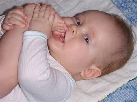 Gambar Janin 0 9 Bulan File Baby First Teeth Jpg Wikipedia