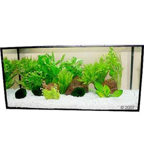 comment d 233 corer un aquarium