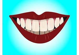 Smile With Teeth - Download Free Vector Art, Stock ...
