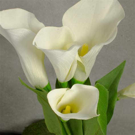 white calla flower 22 quot calla lily bunch 5 white 30536cm craftoutlet com