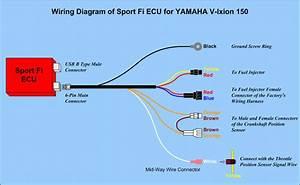 Wiring Diagram Yamaha New Vixion