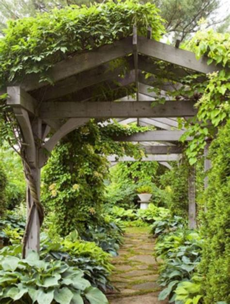 covered trellis covered walkway arbor trellis through woods wooded path backyard oasis pinterest