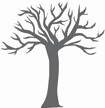 Tree Branches Clipart Coloring Trunk Silhouette Empty