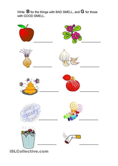 good smell  bad smell kindergarten worksheets