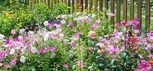 Kleiner Zaun Für Beet : 4 wichtige tipps f r einen tollen reihenhausgarten willkommen in franks kleinem garten ~ Buech-reservation.com Haus und Dekorationen
