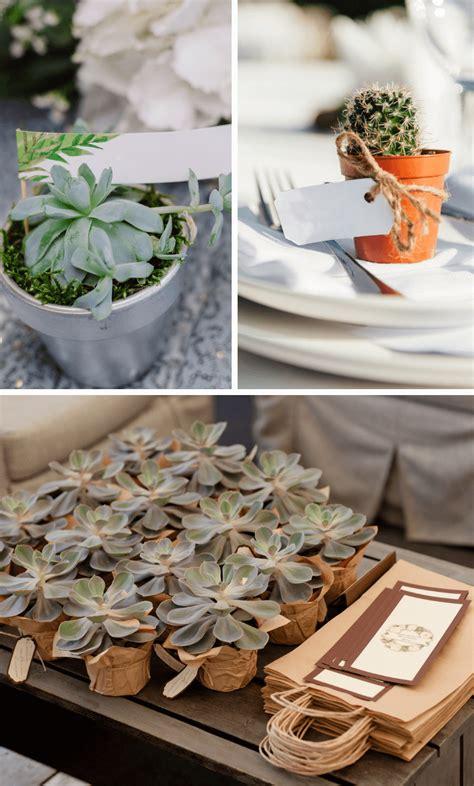 sukkulenten und kaktus ideen fuer die hochzeit