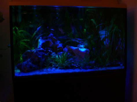 uv le für pflanzen aquarium komplett 160 liter abdeckung unterschrank