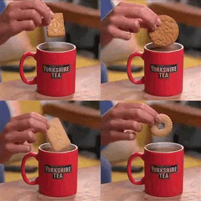 Tea Yorkshiretea Giphy Biscuits Pot Seek Hide