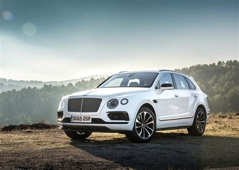 top 5 cool facts bentley bentayga cars co za