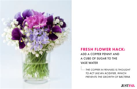 How To Preserve Flowers In A Vase by 5 Hacks To Keep Your S Day Flowers Fresh