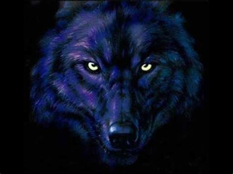 Blue Cool Wolf Wallpaper by Wolf Tribute