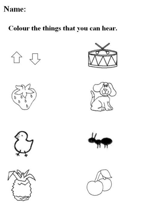 senses worksheets  kindergarten
