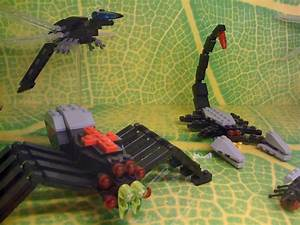 Lego Store Models  Giant Dragonfly  Black Widow     Spider