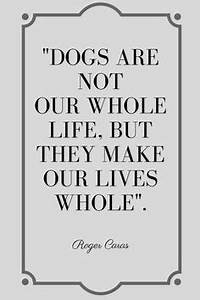 719 Best Dog quotes images in 2019 | Dog quotes funny ...