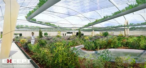 cuisine high tech the high tech permaculture metabolic engine greenhouse