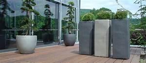 Kübelpflanzen Für Terrasse : pflanzen und palmen f r die terrasse p2 objekt gr n ~ Lizthompson.info Haus und Dekorationen