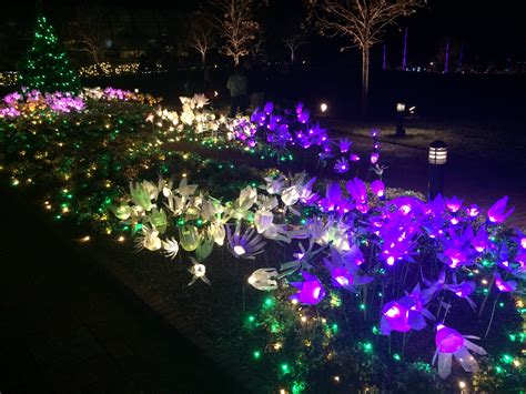 lewis ginter festival of lights lewis ginter festival of lights iron