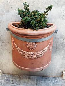 Pianta Da Vaso Decorata Immagine Stock  Immagine Di Liscio