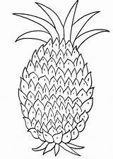 Pineapple Coloring Pineapple3 sketch template