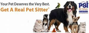why use a professional pet sitting company in knoxville With dog sitting companies
