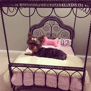 the 25 best yorkie ideas on pinterest yorkie puppies With cute dog furniture