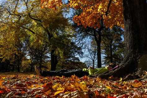 When Does Fall Start Autumnal Equinox Marks First Day Of