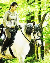 Merlin Morgana Horse Riding