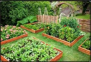 Gemusebeet planen tipps fur praktisch orientierte gartner for Garten planen mit bewässerungsset für töpfe pflanzkübel