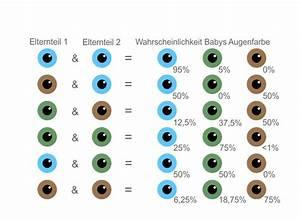 Augenfarbe Baby Berechnen : augenfarbe beim baby wann steht sie endg ltig fest ~ Themetempest.com Abrechnung