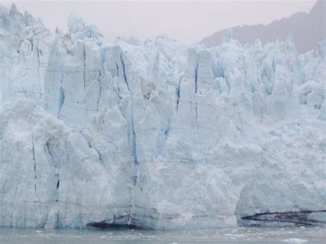 inspiring majestic bay photo the majestic glacier bay national park karim ladak