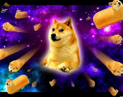 Doge Meme Wallpaper Hd