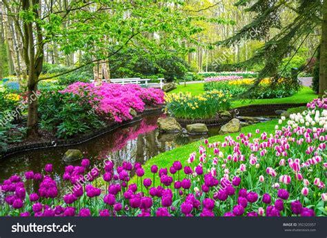 Pin Beautifulspringflowers1679facebookcovernature
