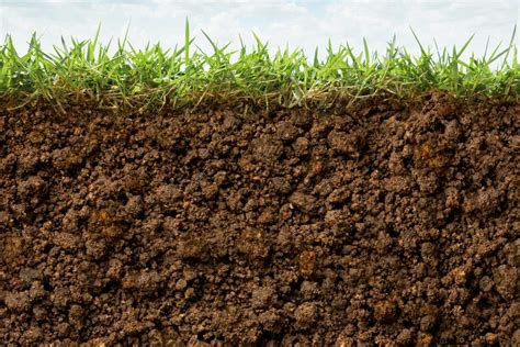 Vertrockneten Rasen Retten by Operation Rasen Retten