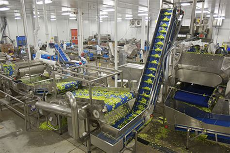 Food And Beverage Manufacturing Investinontario