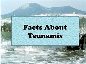 Facts About Tsunamis - The Best Fact In 2018