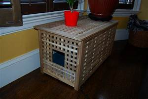 An Easy DIY: Cat Litter Box Ideas HomesFeed