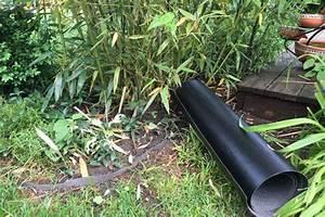 Bambus Im Garten Vernichten : wurzelsperre bambus bambus wurzelsperre wurzelsperre ~ Michelbontemps.com Haus und Dekorationen