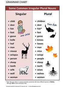 Irregular Singular and Plural Nouns Worksheet
